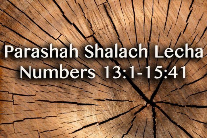 Parashah Shalach Lecha