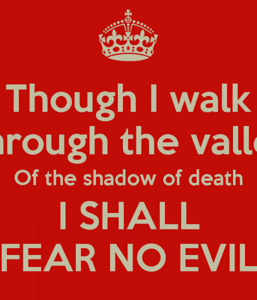 though-i-walk-through-the-valley-of-the-shadow-of-death-i-shall-fear-no-evil