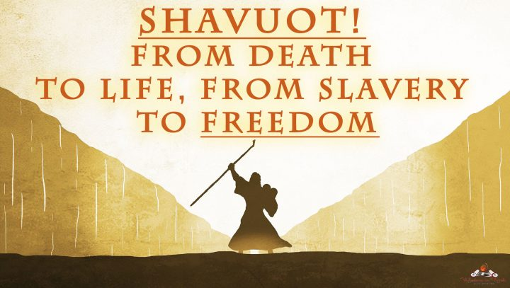 Shavuot-from-death-to-life
