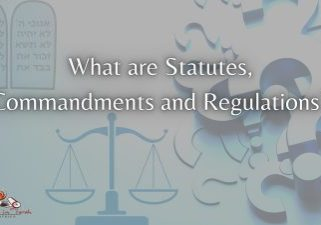 What-are-Statutes-Commandments-and-regulations?