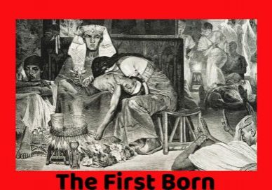 The-Death-of-the-First-born