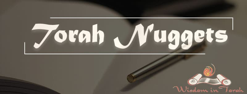 Torah-Nuggets-New-Website