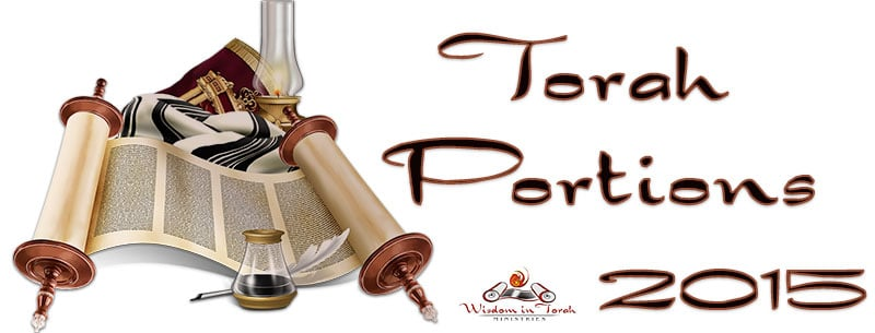 Torah-portion-2015-new-website